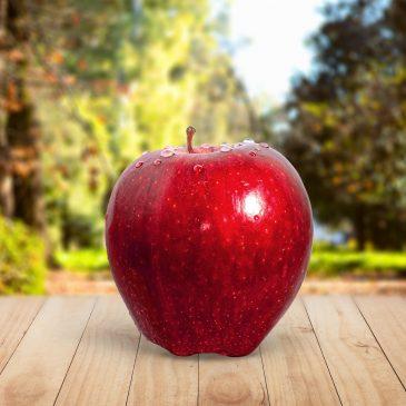 Őshonos gyümölcsfák ajándékba