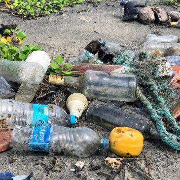 Minden, amit tudni akartál a szelektív hulladékgyűjtésről